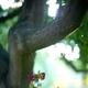 1375024170 small thumb b8b3e339bee7d0f8fdef12ed69b43eee