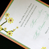 Stationery, orange, green, And, Shimmer, Creative outlook designs
