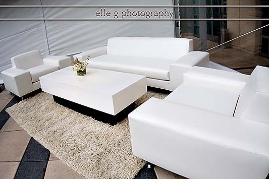 Flowers & Decor, Decor, Furniture, Lounge