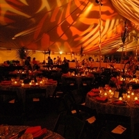 Reception, Flowers & Decor, Area, Nashville zoo