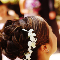 Beauty, Updo, Hair, Joyce luck style