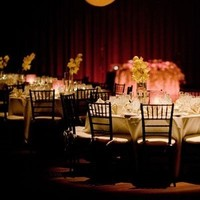 Reception, Flowers & Decor, Lighting, Pin