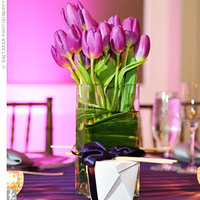 purple, Centerpiece, Tulip