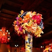 orange, red, Centerpiece, Images by images