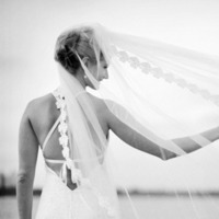 Veils, Fashion, white, black, Bride, Veil, And, 39 east