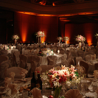 Flowers & Decor, Decor, Classic, Lighting, And, Elegant, The, With, Setting, Uplights, Uplighting, Amber, Mood, Amber event design, Pinpspots