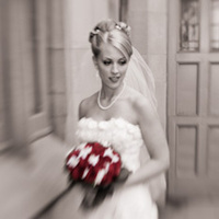 Bride, Portrait, Posed, Wayne tam photography, Soft focus, Spot coloring
