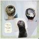 1375025242 small thumb 7b73922a6fe22bbb6830adb2ba140603