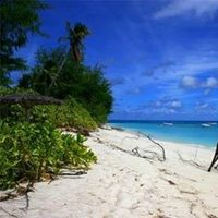 Beach, Island, Denis
