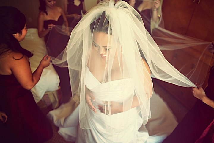 Veils, Fashion, Bride, Veil, Wedding, Lticultural