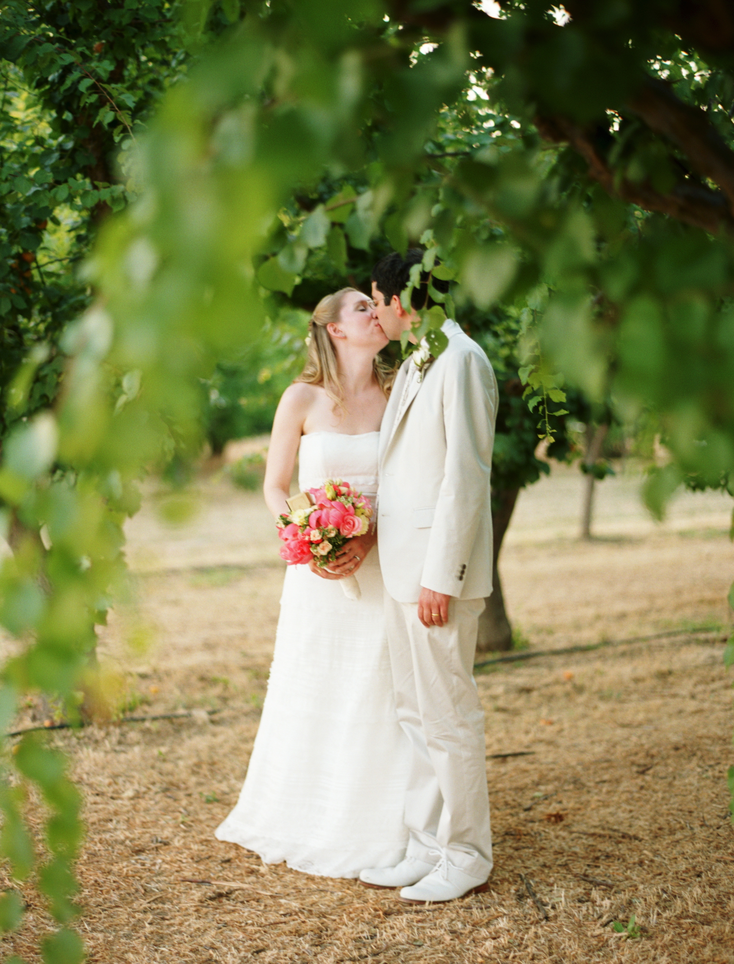 white, pink, Wedding, Farm, Kissing couple