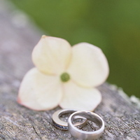 Jewelry, Destinations, pink, Engagement Rings, North America, Wedding, Ring, Napa, Dogwood, Napa valley