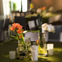 Flowers & Decor, orange, green, Centerpieces, Modern, Flowers, Modern Wedding Flowers & Decor, llc, Suzanne the party girl