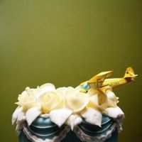 Cakes, cake, Cake topper, Airplane