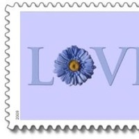 Stationery, Invitations, Custom, You, Thank, Stamps, Postage, The wedding shoppe
