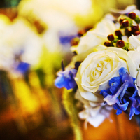 Flowers & Decor, white, blue, brown, Bride Bouquets, Bridesmaid Bouquets, Flowers, Bouquet, Bridesmaid, Megan haney designs