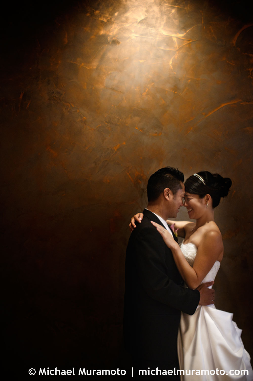 brown, Lighting, Bride, Groom, Portrait, Hotel, San francisco, Michael muramoto photography, Vitale, Bar americano