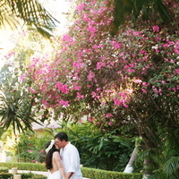 Destinations, yellow, blue, Destination Weddings, Mexico, Beach Weddings, Wedding, Nautical, Navy, Mexico weddings, The tides zihuatanejo