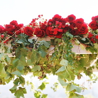Ceremony, Flowers & Decor, Decor, Destinations, red, North America, Roses, Wedding, Napa, Dramatic, Napa valley