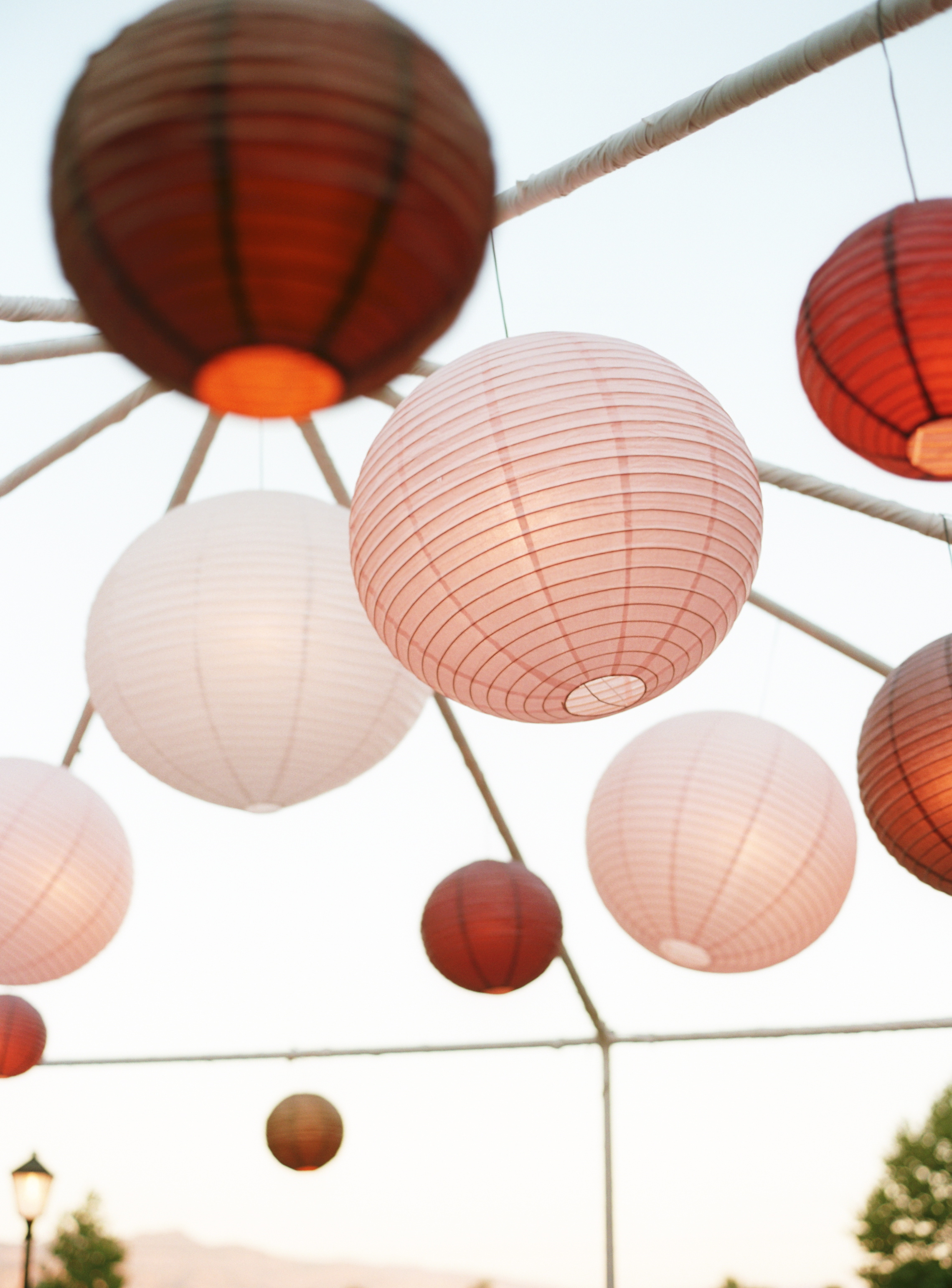 Reception, Flowers & Decor, Decor, pink, brown, Vineyard, Wedding, And, Paper lanterns