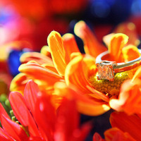 yellow, orange, red, blue, Rings, Wedding, Images by min