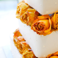 Reception, Flowers & Decor, Cakes, yellow, brown, cake, Wedding, Resort, Tan, Pacific palms resort, Pacific, Palms
