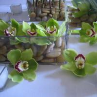 Flowers & Decor, green, Centerpieces, Modern, Flowers, Modern Wedding Flowers & Decor, Centerpiece, Orchids, Arrangement, Starbright floral design
