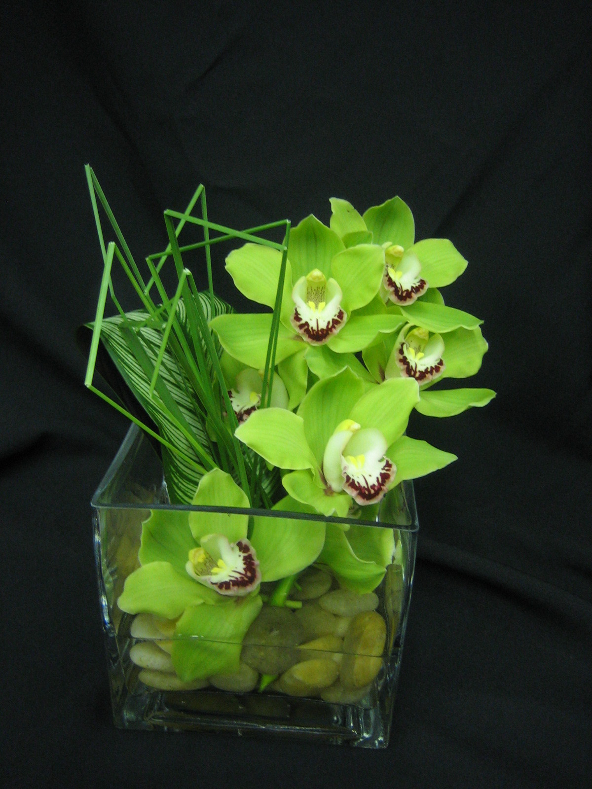 Flowers & Decor, green, Centerpieces, Modern, Flowers, Modern Wedding Flowers & Decor, Centerpiece, Orchids, Arrangement, Bar, Starbright floral design, Cymbidiums