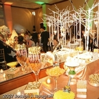 Candy, Bar, Resort, Receptions, Dallas, Gaylord, Weddings of elegance, Texan