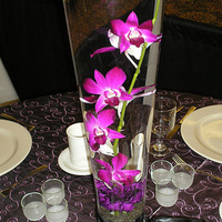 purple, Centerpiece, Orchids, Carnations, Rose of sharon, event florist