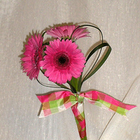 pink, Bouquet, Bright, Daisies, Gerbera, Rose of sharon, event florist