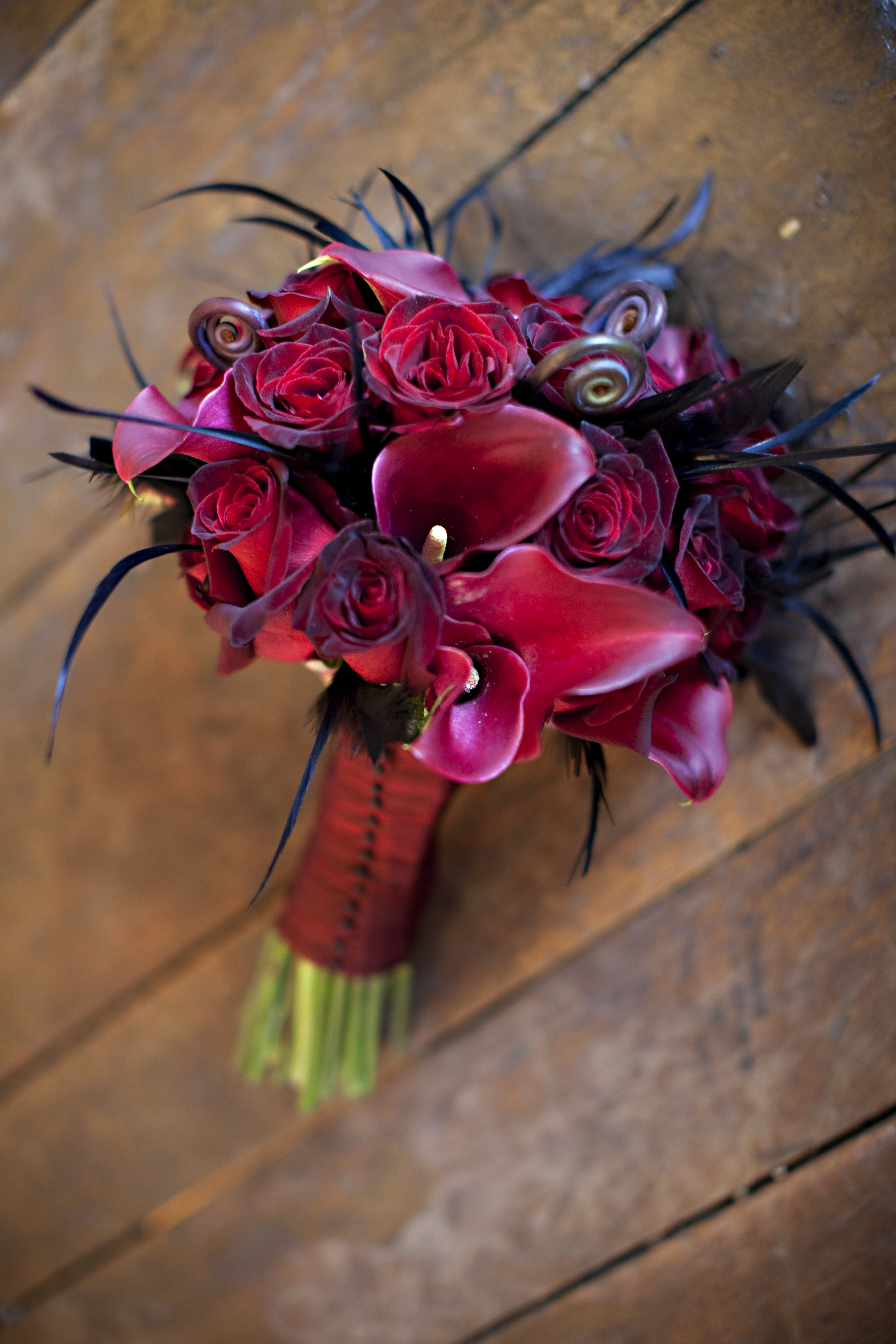 Beauty, Flowers & Decor, red, Feathers, Bride Bouquets, Flowers, Roses, Bouquet, Calla, Bridal, Hand, Lily, Fern, Just bloomed florals, Held, Fiddleheads, Shoots