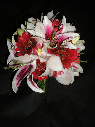 Bouquet, Lilies, Orchids, Stargazer, Daisies, Gerbera, Rose of sharon, event florist