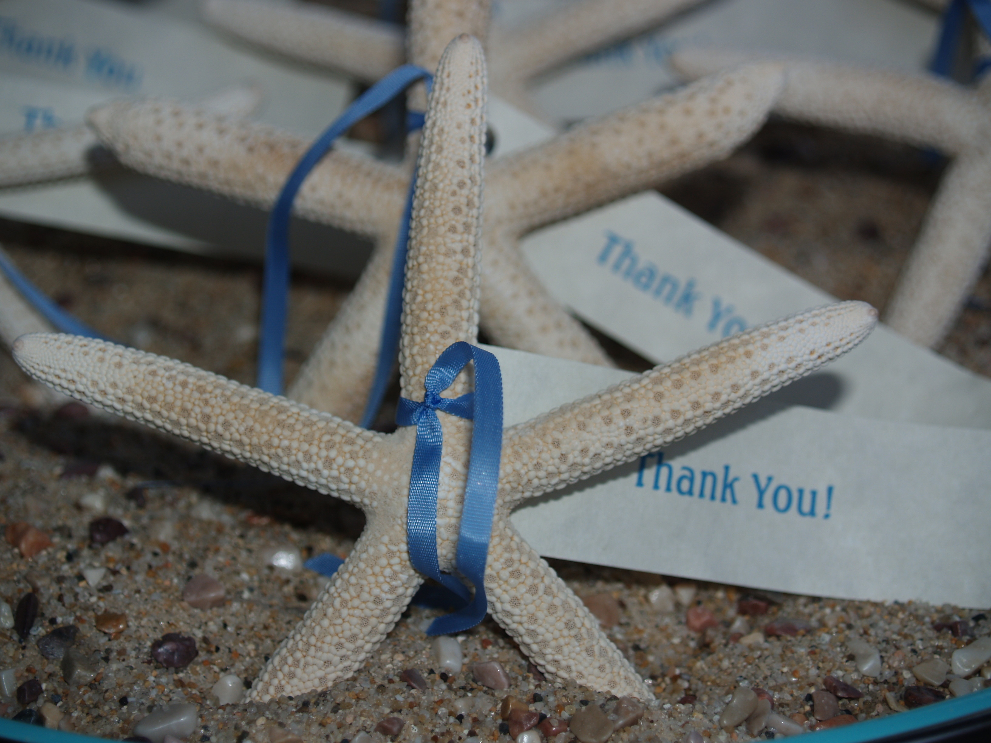 Gifts, Starfish, You, Thank, Tags, Celestes event planning