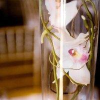 Flowers & Decor, Centerpieces, Flowers, Orchids, Ever after florals