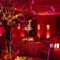 Flowers & Decor, pink, Lighting, Flowers, Dance, Gobo, Floor, Pinspot