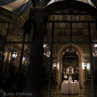 Reception, Flowers & Decor, Cakes, Destinations, cake, North America, Portrait, Bride and groom, Miami, Susan stripling photography, Vizcaya