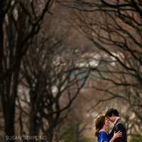 Destinations, North America, Engagement, Engagement session, Nyc, Engagement portrait, New york, Central park, Susan stripling photography