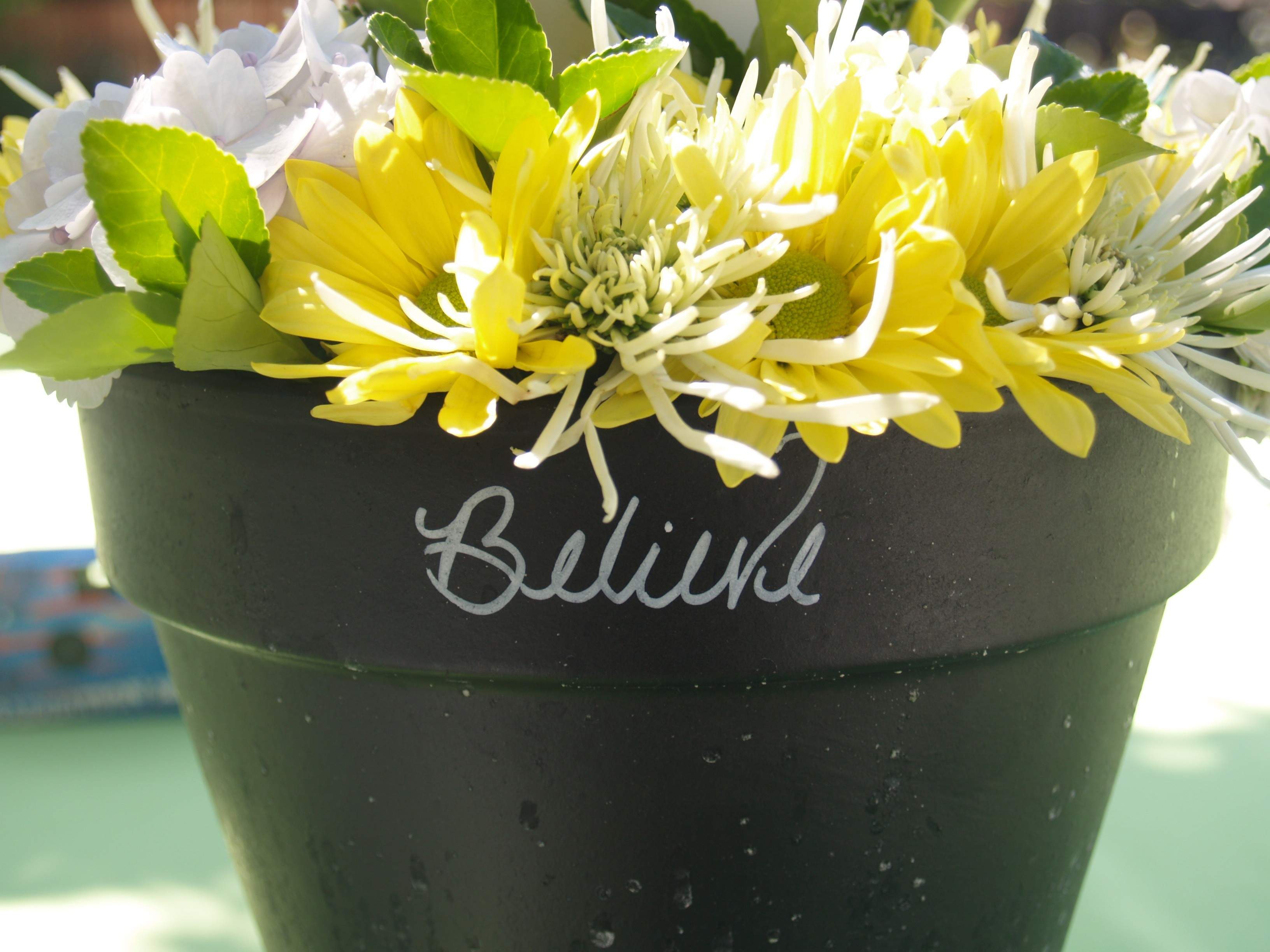 Flowers & Decor, yellow, Centerpieces, Flowers, Centerpiece, Celestes event planning, Pot