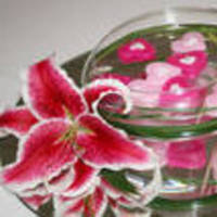 Reception, Flowers & Decor, pink, Centerpieces, Centerpiece, Budget events