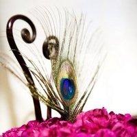 Flowers & Decor, Flowers, City, Wedding, San, Francisco, Plum, Sophisticated, Peacock feather