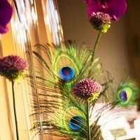Beauty, Flowers & Decor, Decor, Feathers, Flowers, City, Wedding, San, Francisco, Feather, Plum, Sophisticated