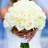 Flowers & Decor, white, Flowers, Roses