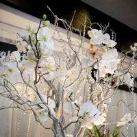 Reception, Flowers & Decor, white, Escort, Carnations, Manzanita, The blue orchid, Crystal tree, Phalaenopsis orchids