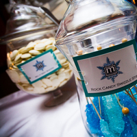 Reception, Flowers & Decor, Favors & Gifts, white, blue, black, silver, favor, Winter, Wedding, Custom, Teal, Candy, Ice, Buffet, Guest, Logo, Event, Turquoise, Wonderland