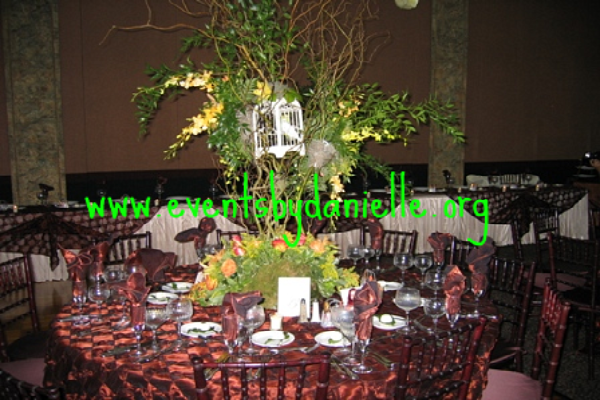 Reception, Flowers & Decor, green, Centerpieces, Eco-Friendly, Centerpiece, Weddings, Events by danielle