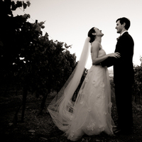 Flowers & Decor, white, black, Vineyard, And, Sonoma, Cindi de channes photography