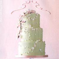Cakes, cake, Spring, Wedding, Blossom, Pink cake box