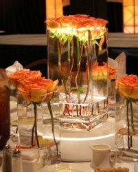 orange, Centerpiece, Candle, Rose