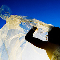 Veils, Fashion, blue, Bride, Veil, Halo photographic